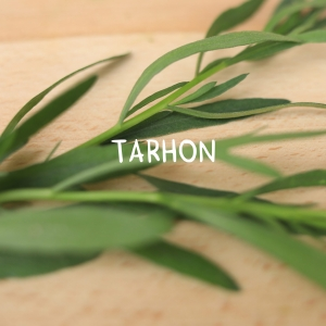 Tarhon (100g)