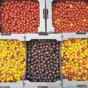 Roșii cherry (500g)