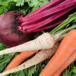 """""""DETOX – ideal pentru suc: morcov, pătrunjel, sfeclă"""""""
